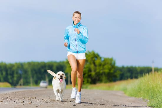 Workouts are better with a partner. Dog running with his owner outdoors.