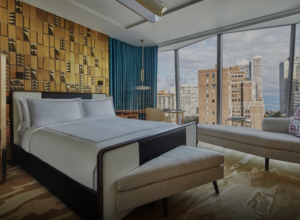 The Animalista Chicago Pet Friendly Hotels Viceroy Chicago