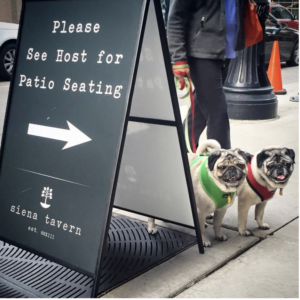 The Animalista Chicago pet friendly restaurants - Siena Tavern