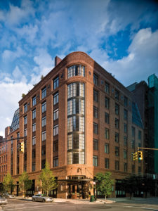 The Animalista NYC Pet Friendly Hotels - The Greenwich Hotel