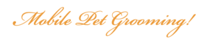 Hollywood Pet Grooming LA