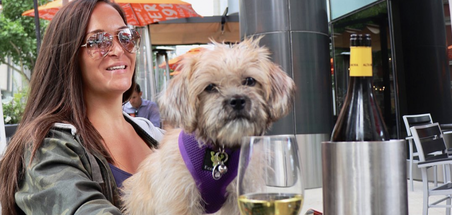 The Animalista Chicago pet friendly restaurants